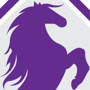 Second Chances Equine Rescue Inc.