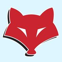 Fox Moving and Storage - Nashville