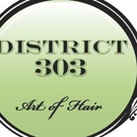 "District 303 ""Art of Hair"""
