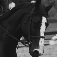 Valkyrie Equestrian Center