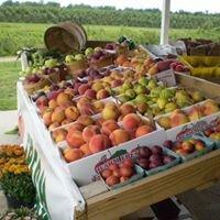 Mills Fruit Farm