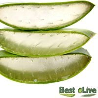 Best oLive