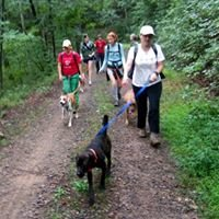 Asheville Humane Society Hiking Hounds