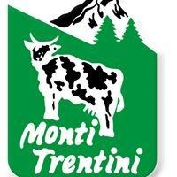 Casearia Monti Trentini S.p.A.