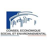 Conseil économique, social et environnemental