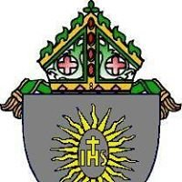 Diócesis de Caguas, Puerto Rico - Página Oficial