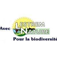 Lestrem Nature