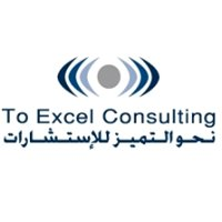 To Excel Consulting