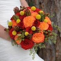 Floral Designs by Nina