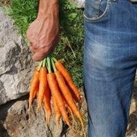À pic légumes