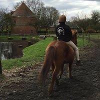 Ferme Equestre de Bois Guilbert