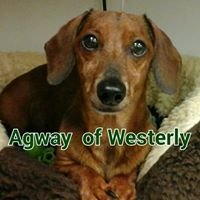 Westerly Agway