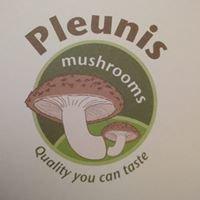 Pleunis Mushrooms