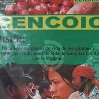 Central Cooperativa Indigena Del Cauca Cencoic