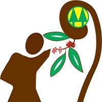 Cooperativa Agraria de Mujeres Productoras de Café -  Pichanaki