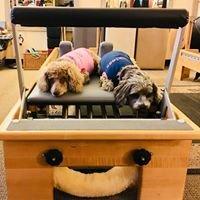 Apex Pilates Personal Training