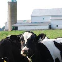 Selah Farms