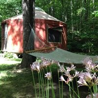 Salt Creek Retreats Cabin and Yurt Rental in the Hocking Hills
