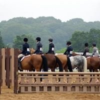 Long Island Horse Shows