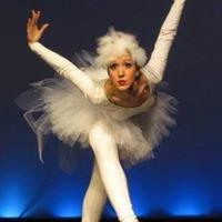 Center for the Arts Ballet School