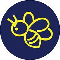 Beeline Tours & Travel
