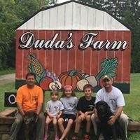 Duda's Farm, Inc.
