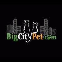 Big City Pet