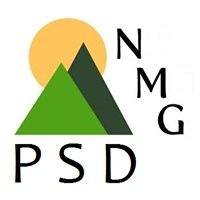 NMG - Professional Services Division