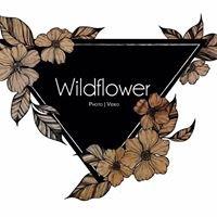 Wildflower Studios