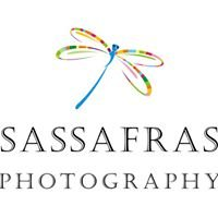 Sassafras Photography-Darcy Sherman Superior, Co 80027