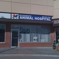 Bayviewwoods Animal Hospital