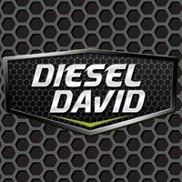 Diesel David Inc