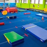 AcroSports Gymnastics