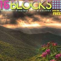 16 Blocks Satellite Art House