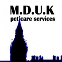 Mad Dogs & Englishmen Pet Care Services