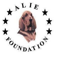 ALIE Foundation, Inc.