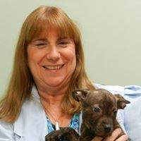 Animal Alternatives Holistic Health Care Clinic