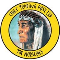 Chief Trading Post