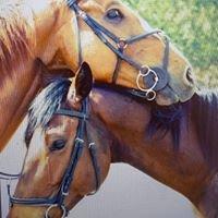 Esperanza Equestrian Centre & Venue