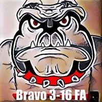Bravo Battery 3-16 FA