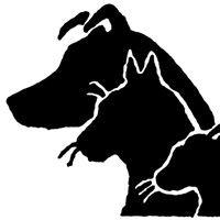 Creature Comforts Animal Clinic