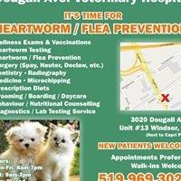 Dougall Avenue Veterinary Hospital
