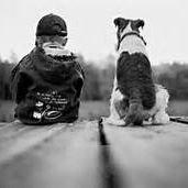 Kings SPCA Halfway Home
