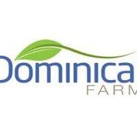 Dominical Farm