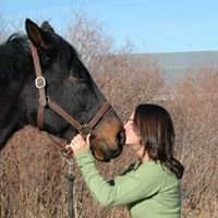 Contact With Horses LLC