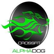 CrossFit Alpha Dog