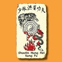 Shaolin Hung Mei Kung Fu Association