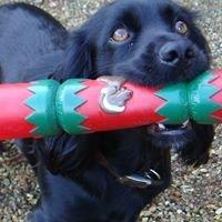 Bowood Christmas Extravaganza