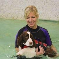 Essex Animal Hospital & Canine Rehab / Fitness Centre