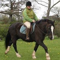 Justine Rumney Horses